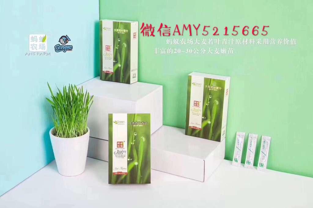 蚂蚁农场大麦若叶青汁浅笑,青汁代理条件,蚂蚁农场青汁价格表
